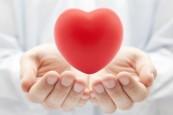 4_097_healingheart_media